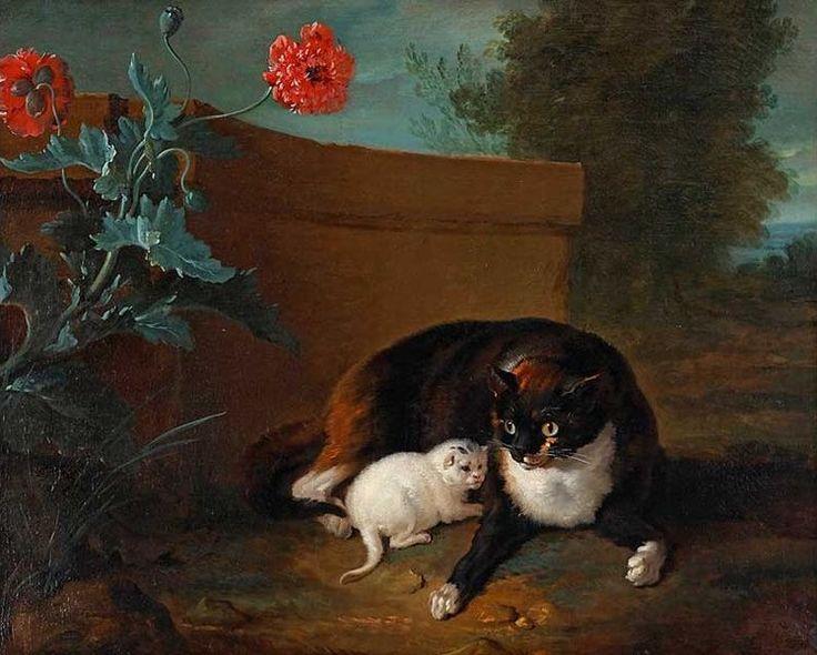 Gato con su gatito