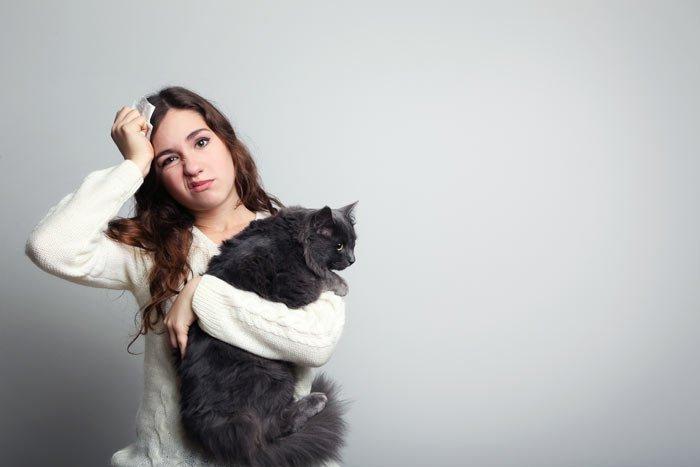 Alergia a los gatos: Causas, síntomas y vacuna