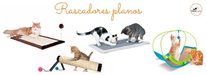 Rascadores de suelo para gatos y gatitos