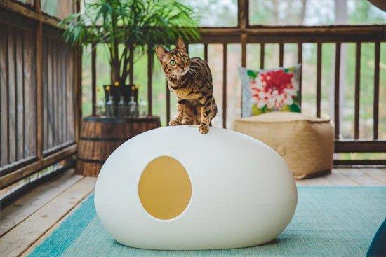 arenero para gatos de color blanco
