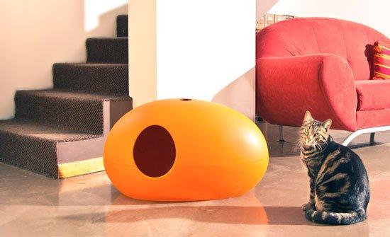 gato en un salón al lado de un arenero naranja