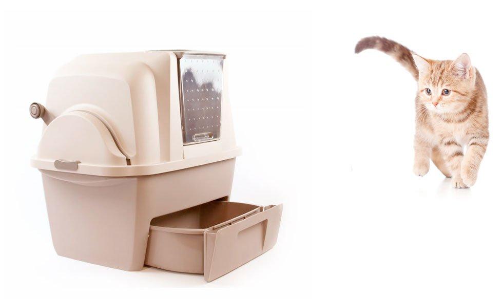 arenero-cubierto-automático