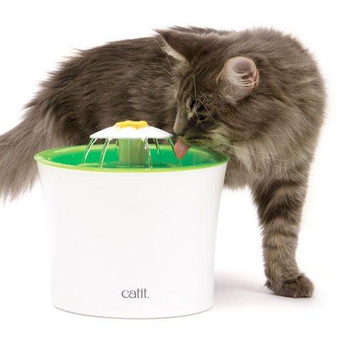fuente para gatos catit