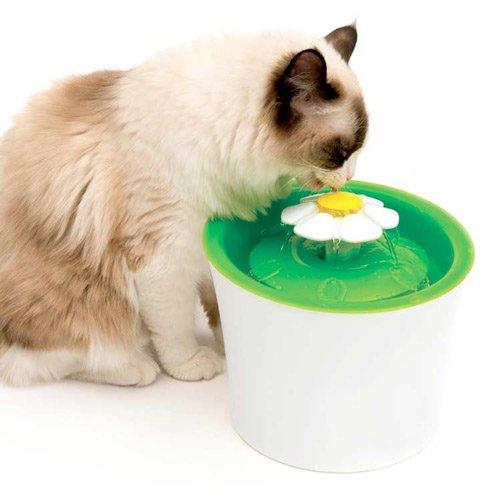 Fuentes para Gatos (tipos y caracteristicas)