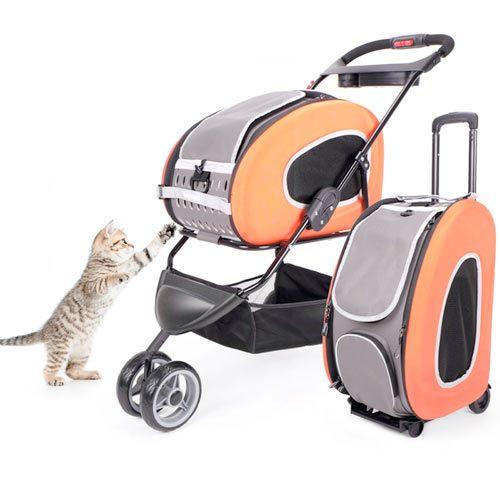 Accesorios para Gatos ¿ronroneamos?