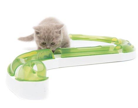 Los juguetes interactivos para gatos son muy importantes
