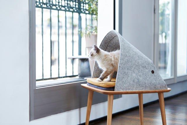 cama para gatos elevada y original