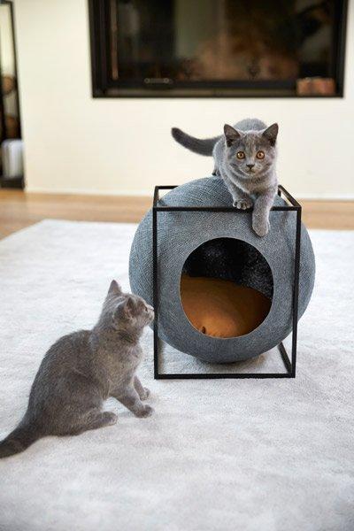 casa-cueva-meyou-feelcats_01