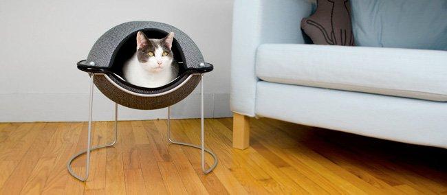 casa elevada para los gatos