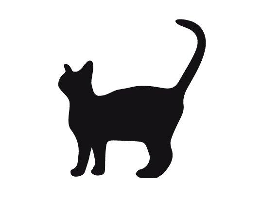 gato-mueve-punta-cola