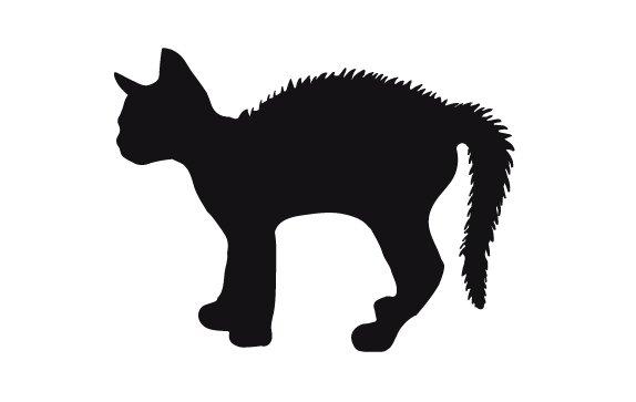 gato-con-la-cola-arqueda