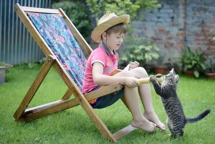tener-un-gato-y-sus-beneficios