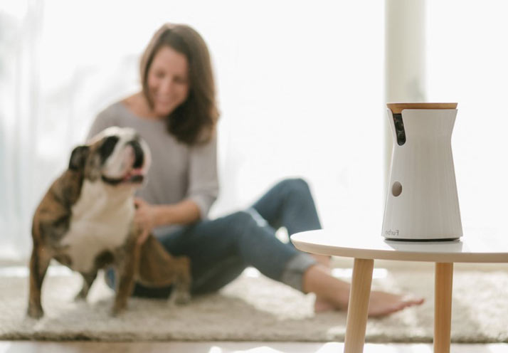furbo-dog-camera