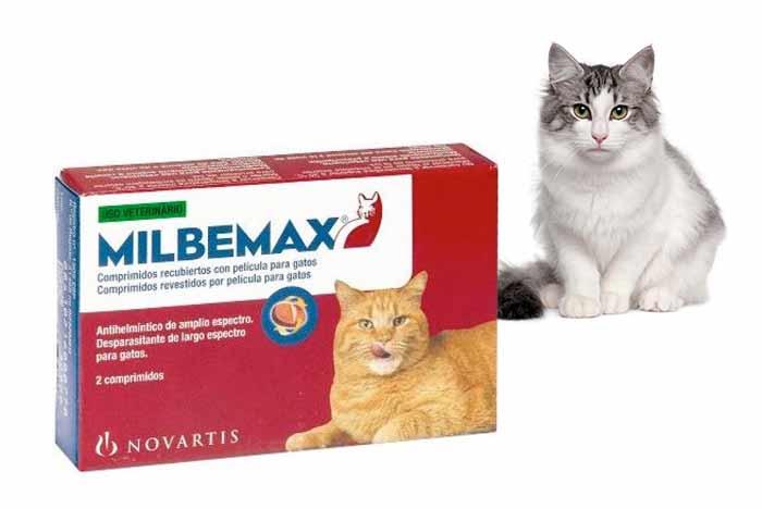 milbemax-para-gatos