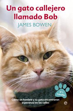 gatos-libros