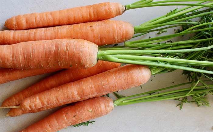 dieta-barf-verdura-fruta