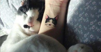 Tatuaje gato