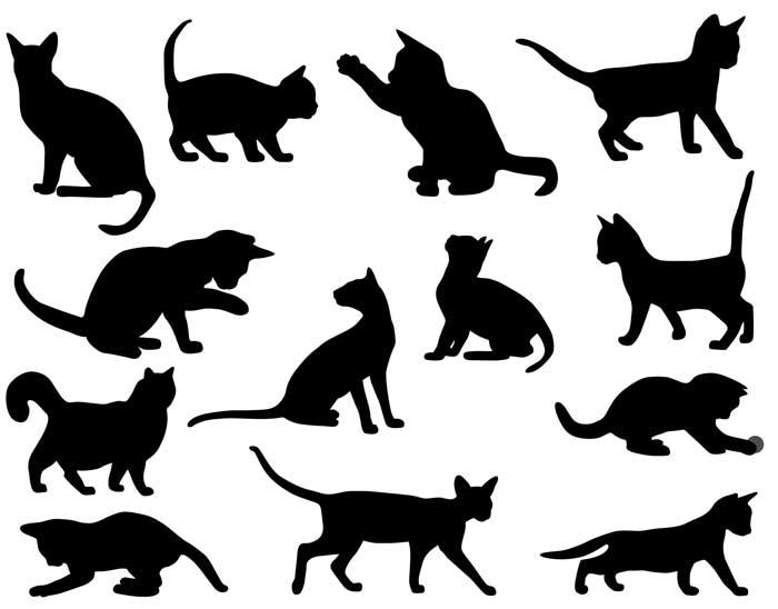 tatuajes-gatos-negros