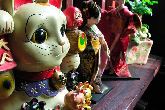 historia-gato-chino