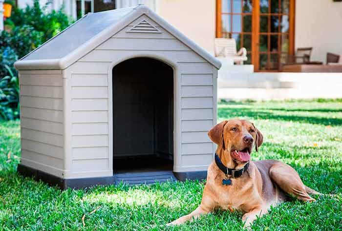 caseta de plástico para perro, de color gris y muy resistente