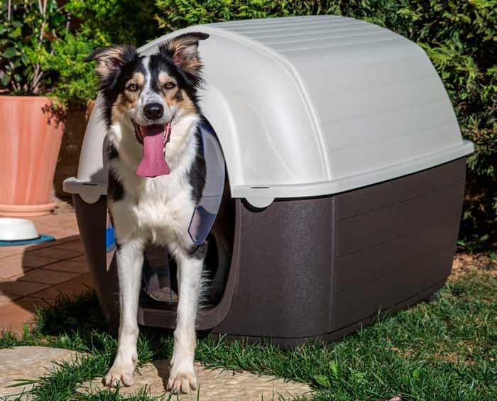 caseta para perro, original y moderna, para exterior