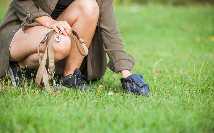 mujer recogiendo la diarrea de un perro en un parque