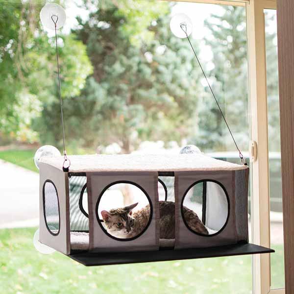 cama ventana gato
