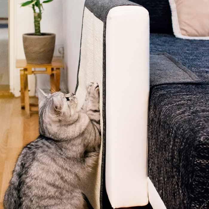 juego para gatos rascador, que es protector de sofá, evitando arañazos