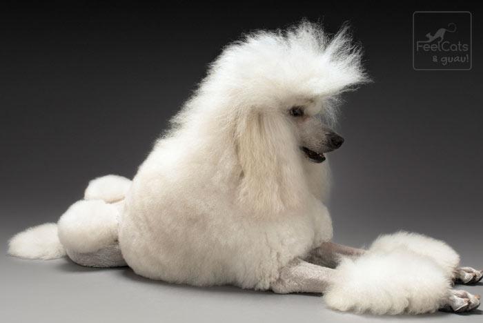 Perro elegante blanco