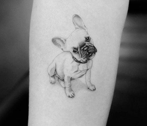 tatuaje de la raza bulldog francés